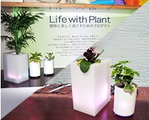 Life with Plant